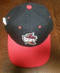 iowa state cyclones fitted hat size 6