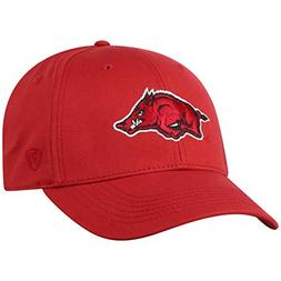 NCAA Arkansas Razorbacks Men's Fitted Relaxed Fit Team Icon
