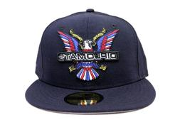 The Diplomats 90s Hip Hop Dipset Navy Blue Big Bird New Era